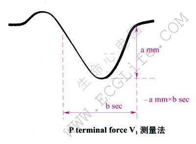P terminal force V1测量法